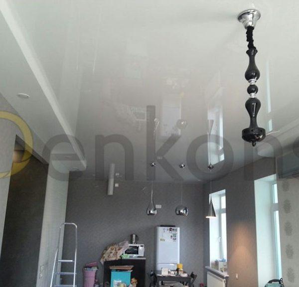 Натяжные потолки на кухню - Проект 5